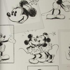 Paper pintat Mickey